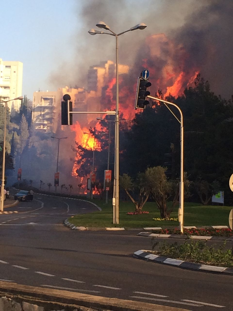 Les incendies ont été particulièrement violents sur le Mont Carmel et dans la ville portuaire de Haïfa (photo : Lior Rosenthal)