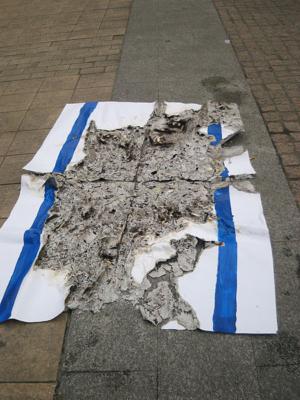 On commence par brûler les drapeaux israéliens puis on poste la photo sur Facebook ou d'autres réseaux sociaux (photo : 27zapata / Imanol Epelde Pagola/ Wikimedia commons)