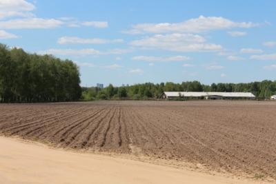 Un kibboutz israélien permet de pratiquer une agriculture durable grâce à ses développements                           (photo :Pixabay).