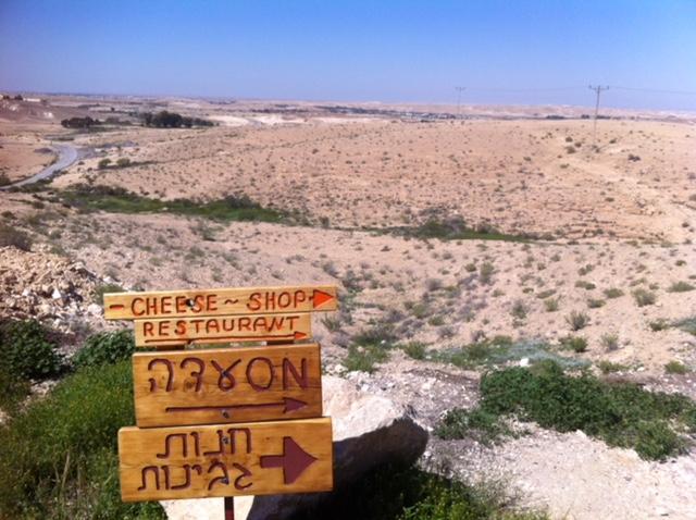 Un nombre croissant de fromageries s'installent dans le désert du Néguev (photo : KHC).