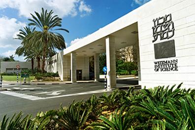 20 pour cent des diplômés du célèbre institut Weizman à Re'hovot s'expatrient pour plus de trois ans (photo : Institut Weizmann)