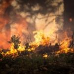 Le village de Mevo Modi'in a été presque totalement détruit par les récents incendies (photo : capture d'écran Youtube).