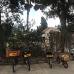 Vélos non cadenassés mais portant le nom de leur propriétaire dans un kibboutz en Israël (Photo : KHC)