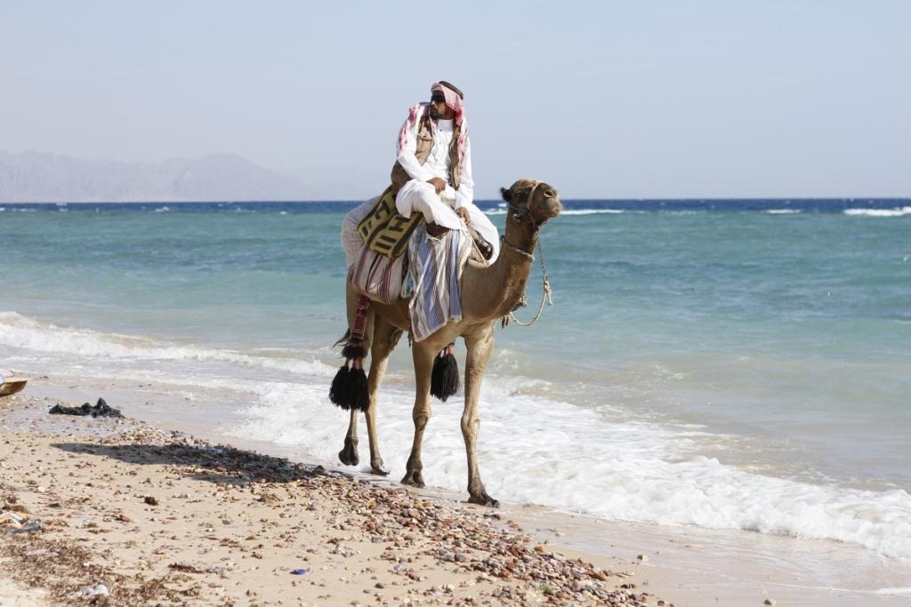 Image de carte postale du Sinaï (photo : Pixabay).