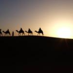 Les échanges commerciaux des Edomites étaient plus complexes que supposé (photo : pexels.com)