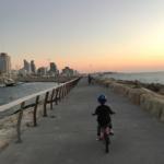 La ville manque cruellement de pistes cyclables, même si certaines sont spectaculaires, par exemple celle-ci sur la promenade (photo : KHC)
