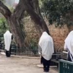 royants à Tel-Aviv priant à l'extérieur de la synagogue au temps du coronavirus (photo : Shira Barzilay).