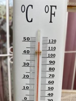 Près de 50°à Eilat. D'après les experts, Israël pourrait à l'avenir souffrir plus souvent de ces températures extrêmes (photo : Barbara Pfeffer)