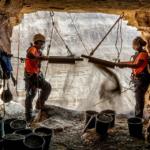Collaborateurs de l'Autorité israélienne des antiquités lors des fouilles dans la Grotte de l'horreur (photo : Eitan Klein, Autorité israélienne des antiquités)